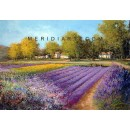 Lavender field -  landscape oil paintings